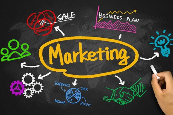 cong-ty-marketing-online-ngoc-thang