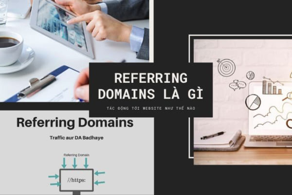 Referring-domains-la-gi