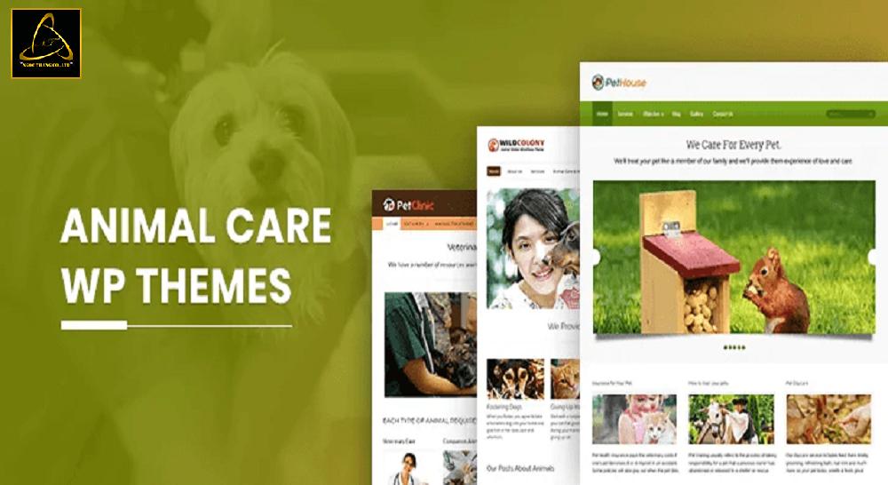 Địa chỉ thiết kế website chăm sóc thú cưng uy tín